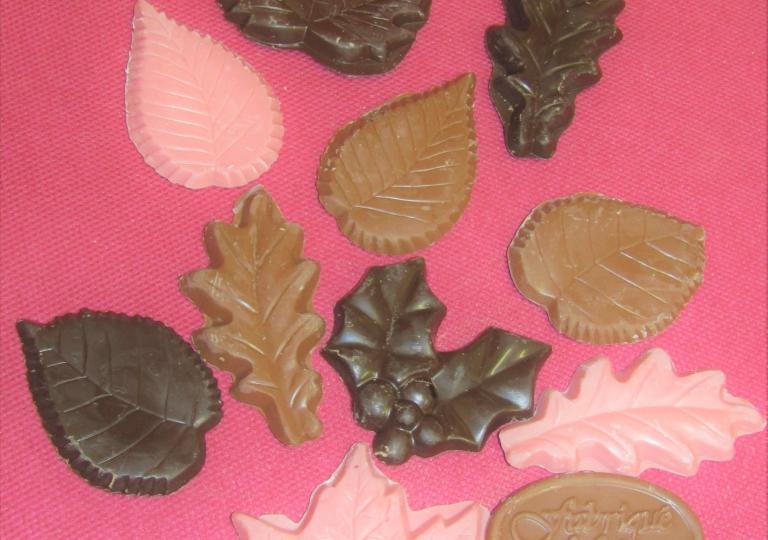 Feuilles en chocolat, noir, lait et rose fruité